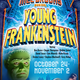 Thumb_young-frankenstein-poster
