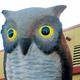 Thumb_owl