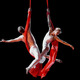 Thumb_alexander_streltsov___christine_van_loo__aerial_duo__1