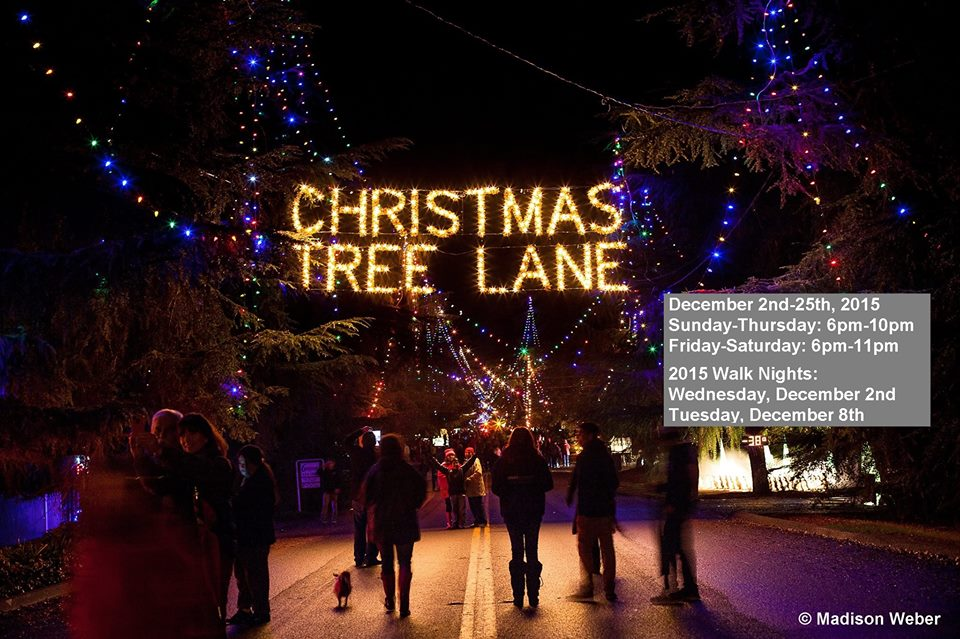 christmas_20tree_20lanejpgtimestamp1446692715