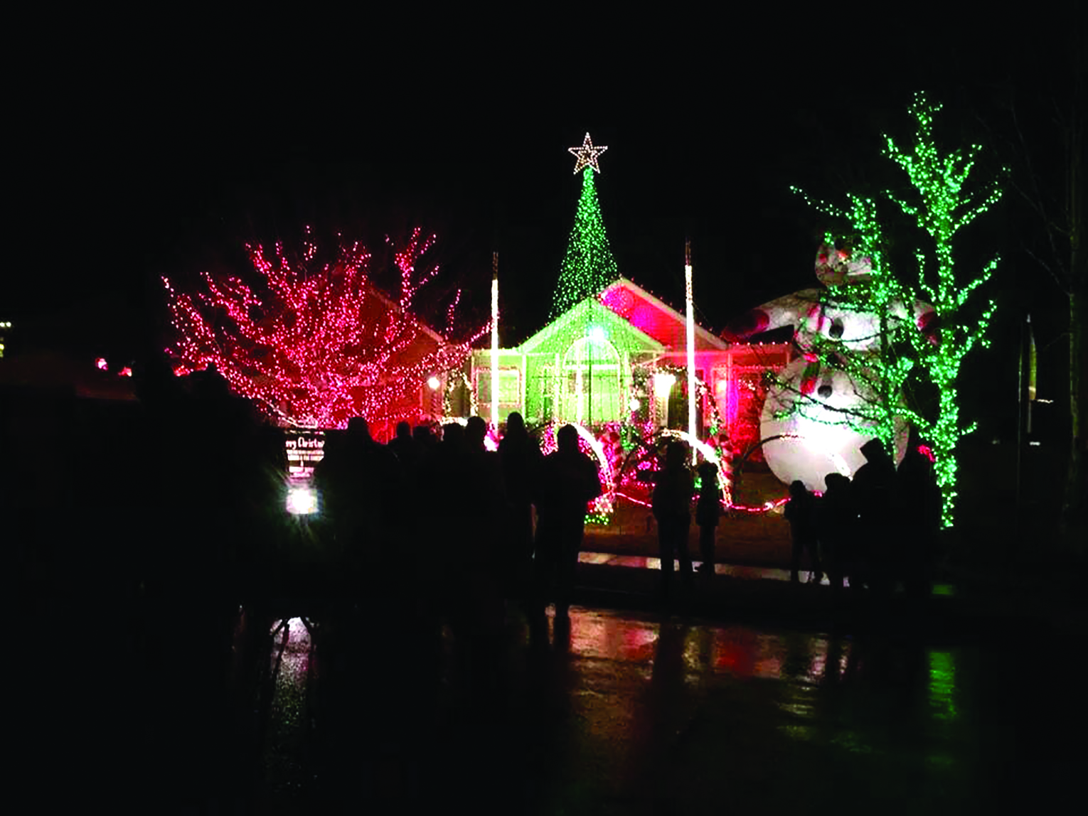 Lights on Wakefield Delight and Profit Local Charities | Valley Journals