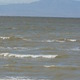 Thumb_borrego_springs_salton_sea_4.12_259