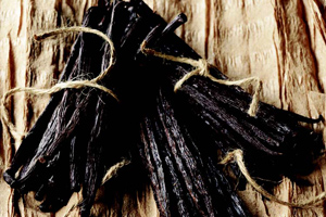 Vanilla beans that have been dried cured and conditioned