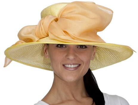 christine-a-moore-irma bright yellow