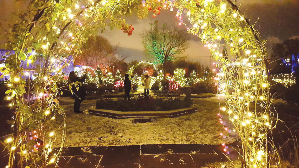 Winter spectacular Glow provides holiday fun for the entire family ...