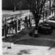 Thumb_century-old-businesses---east-street-1934
