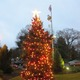 Thumb_tree-of-lights---memorial-hospital-of-easton