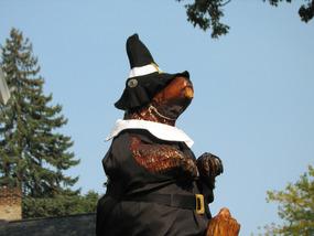 Pilgrim Beaver