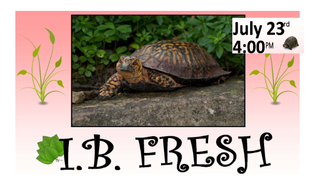 IB Fresh will have Visitors from the San Diego Turtle  Tortoise Society at the IB Library Tuesday July 23rd       Dig Imperial Beach