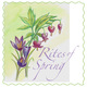 Thumb_rites-of-spring-logo-2