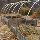 Thumb_hoop-houses-on-raised-beds