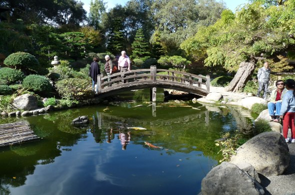 Hakone Garden Moon Bridge and Koi Pond Credit Barbara L. Steinberg 2012