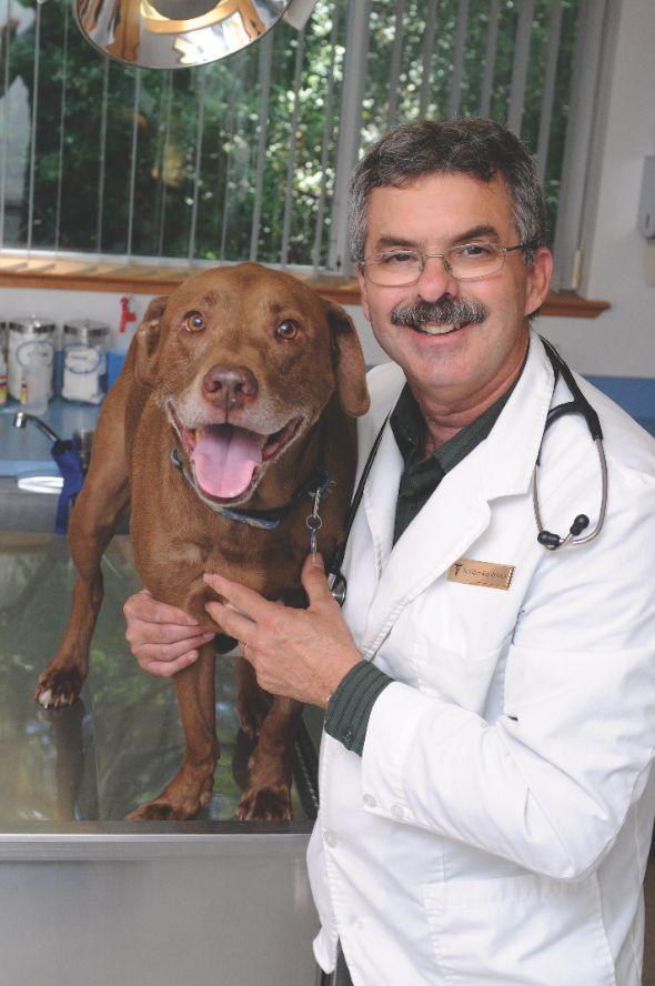WILLIAM KENNEDY, D.V.M. SMITH FLAT ANIMAL HOSPITAL