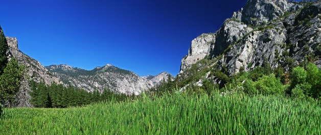 Zumwalt Meadow at Kings Canyon