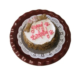 Yappy Birthday cake 2699 at the doggie bag