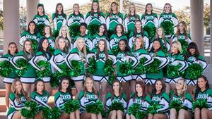 Medium_2013-cheer-teams