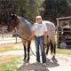 Thumb_dsc_3735_equine_srgb