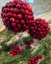 Cranberry Topiaries