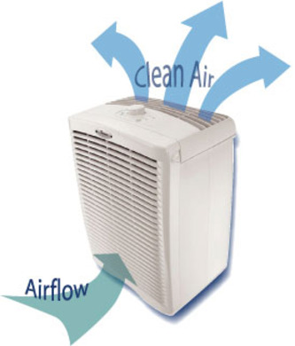 Are Air Purifiers Worth It Home Design
